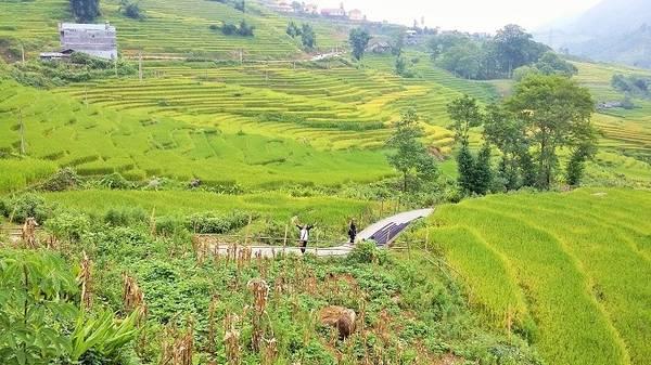 Bên cạnh những khung cảnh ngoạn mục và hùng vĩ của thiên nhiên thì đến Lao Chải - Tả Van có đi bộ mới thấy được hết nét đẹp văn hóa nơi đây.
