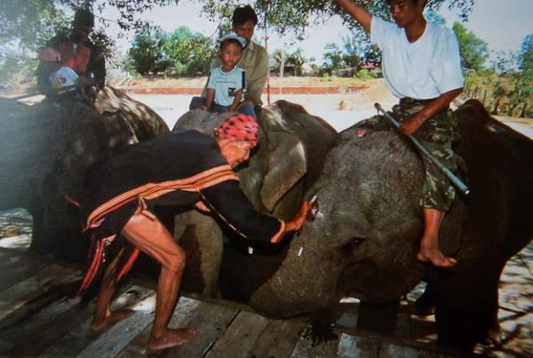 Già làng Ama Kông làm nghi lễ dành cho voi trước ngày hội voi, được tổ chức tại Buôn Đôn - Ảnh: Niimura Yoko
