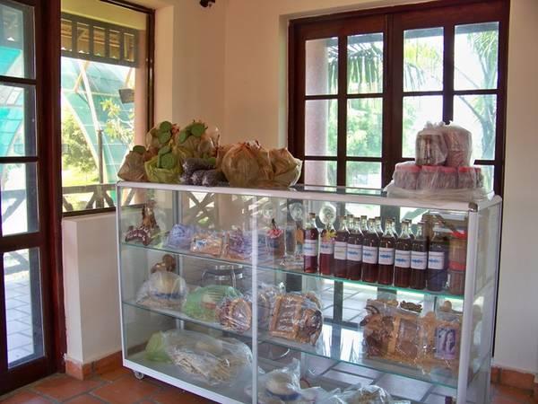Bạn cũng có thể mua ít món quà lưu niệm, đặc biệt mật ong nguyên chất của rừng tràm rất tốt cho sức khỏe. Khu du lịch sinh thái – làng nổi Tân Lập đang ngày càng trở nên hấp dẫn và là một địa điểm không thể bỏ qua với những người yêu thích thiên nhiên.