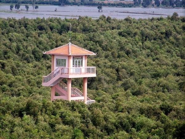 Từ trên tháp quan sát, du khách có thể thấy rừng tràm chạy dài đến ngút ngàn tầm mắt. Vào lúc sáng sớm hay chiều về, du khách sẽ chứng kiến từng đàn cò trắng muốt, cồng cộc đen huyền bay ngợp một phía rừng. Đó là lúc chúng túa ra đi tìm thức ăn hoặc trở về sau một ngày vất vả. Đứng từ tháp này, bạn có thể thấy những tháp khác vươn cao lên khỏi tán rừng.