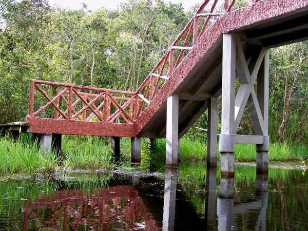 Những chiếc cầu bắc qua con kênh được xây dựng thật chắc chắn và có tính thẩm mỹ.