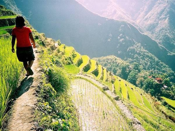 Ruộng bậc thang Banaue. Ảnh: Eesti