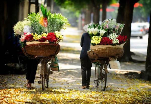 Lang thang dạo phố Hà Nội mùa này thật tuyệt. Ảnh: Sammedia
