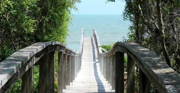 Một con đường dẫn ra biển ở Apalachicola - Ảnh: apalachicolabay.org