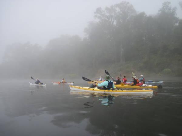 Chèo thuyền khám phá hệ sinh thái ở Apalachicola - Ảnh:visittallahassee