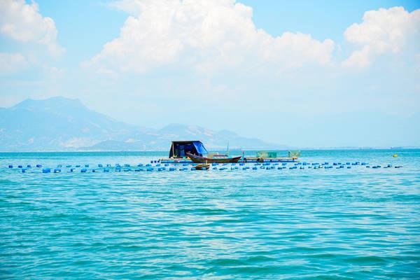 Description:        Du khách cũng có thể tự chèo thuyền đến thăm, chụp ảnh lưu niệm tại các làng bè nuôi cua biển và tôm hùm.
