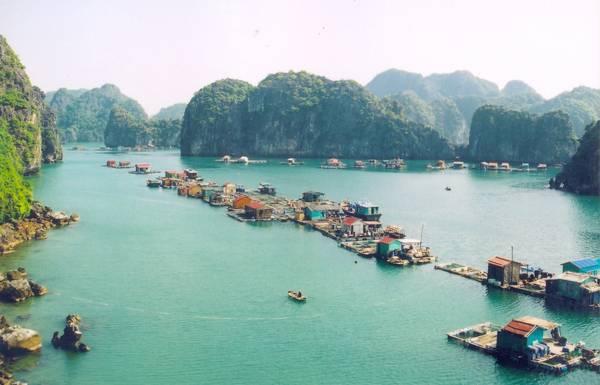 Làng nổi trên Vịnh Lan Hạ. Ảnh: catbabay.com.vn