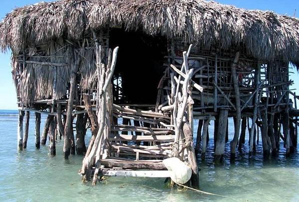 1. Pelican Bar nằm trên bờ biển phía Tây Nam của quốc đảo Jamaica. Nó là một quán bar nhỏ như một cái chòi làm bằng gỗ lũa vững chãi giữa biển.
