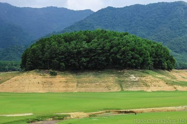 Những đồi đất cao là nơi được trồng nhiều cây tràm dày đặc để khi mùa nước dâng tránh bị sạt lở.