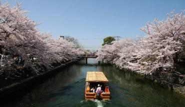 Nhung-dieu-tuyet-voi-nhat-cua-Kyoto-ivivu-8