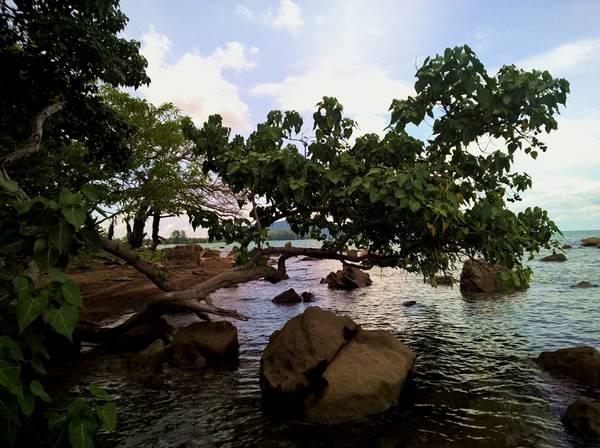 Khung cảnh thanh bình, mát mẻ sẽ khiến bạn chỉ muốn ở đây mãi. Muốn rừng có rừng, muốn biển có biển. Hòn Một gần như tách biệt hẳn với mọi thứ bên ngoài, không ồn ào, bụi bặm, đúng chất hoang đảo.