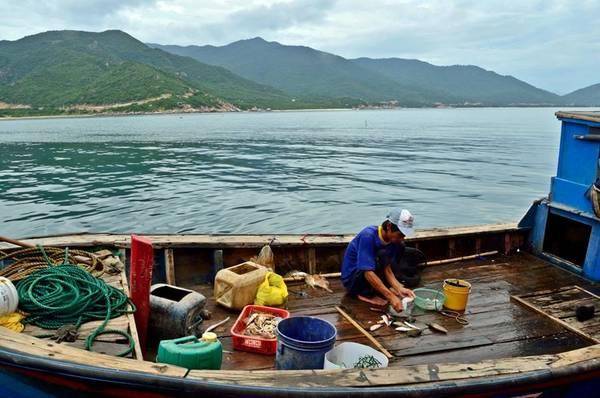 Description: Ngư dân Bình Tiên ra khơi. Ảnh: FB Biển Bình Tiên