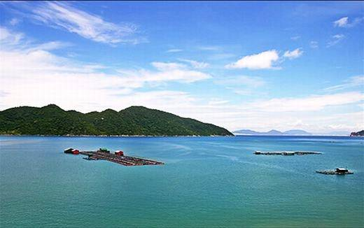 Vịnh Vũng Rô đang được chính quyền đầu tư phát triển du lịch. Tại đây, du khách có thể thuê thuyền của ngư dân để trải nghiệm cảm giác đánh bắt thủy hải sản, cũng như phóng tầm mắt ra bãi biển xanh ngọc tại đây. (Ảnh: Internet)