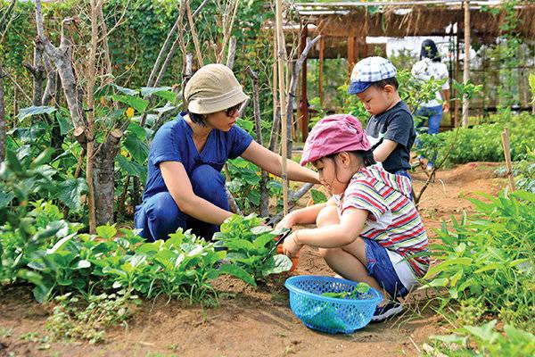 Phụ huynh và các bé tự tay hái rau, dưa leo ở Family Garden. Ảnh: Yến Trinh