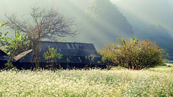 Một ngôi nhà đơn sơ trong bản. Ảnh: Phunuhiendai.com.vn