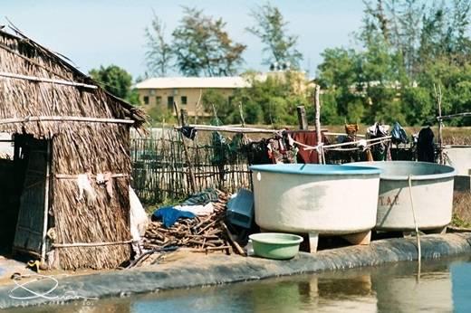 Người dân ở đây sống chủ yếu bằng nghề chài lưới. Dù cuộc sống vẫn còn nhiều khó khăn nhưng họ đang cố gắng thay đổi từng ngày, làm cho xã đảo ngày một tươi đẹp hơn. (Ảnh: Internet)