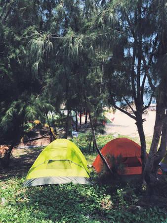 Những chiếc lều trong lùm cây.
