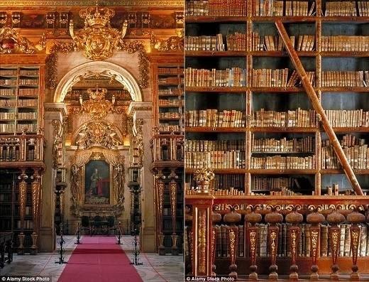 Nằm bên trong đại học Coimbra, Bồ Đào Nha là thư viện Joanina có phong cách Baroque đậm chất quý tộc xưa với những bức tường được lắp đặt những dãy kệ gỗ hai tầng rất đẹp. (Nguồn: Daily Mail)