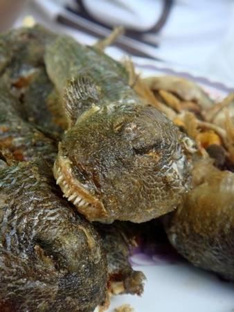 Cá thòi lòi có thể sống được trên cạn và dưới nước. Đây là món ăn bạn sẽ được mời khi về Bạc Liêu. Người dân tại đây thường chế biến cá thành nhiều món khác nhau. Phổ biến nhất là chiên giòn và kho nước dừa. Ảnh: Nguyễn Thanh Hiền.