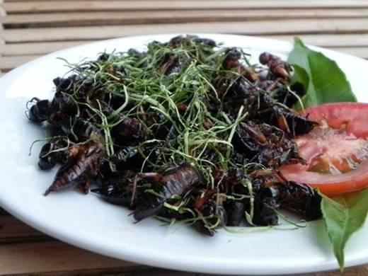 Dế được dùng nhiều ở Trà Vinh, An Giang, Cần Thơ... song hiện nay, loại nguyên liệu này đã phổ biến tại nhiều thành phố lớn. Thịt dế thơm giòn, béo ngọt. Ảnh: Linh San.
