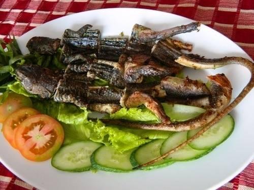 Dông (kỳ nhông) sống phổ biến ở Bình Thuận. Thịt dông thơm, ngon, nhiều dưỡng chất. Người ta thường chế biến kỳ nhông thành các món như gỏi, nấu canh, nướng muối, hầm thuốc bắc hay nấu cháo. Ảnh: Vov4.