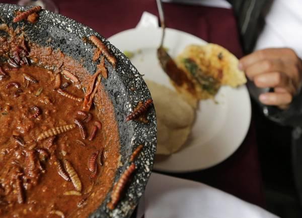 """Tại Mexico, các loài côn trùng được xem là """"đặc sản"""" vì chúng cung cấp nhiều chất dinh dưỡng. Người dân nơi đây thường ăn bánh tacos kèm với các loài côn trùng như sâu. Ảnh: Henry Romero / Reuters"""