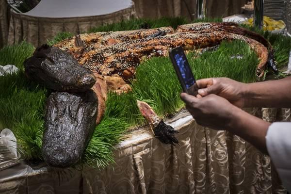 Những chú cá sấu nướng được phục vụ tại Explorers Club Dinner lần thứ 110 được tổ chức tại khách sạn Waldorf Astoria ở New York. Ảnh: Andrew Kelly / Reuters