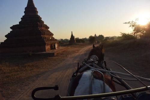 Xe ngựa là phương tiện phổ biến ở Bagan. Ảnh: Thepointsoflife.