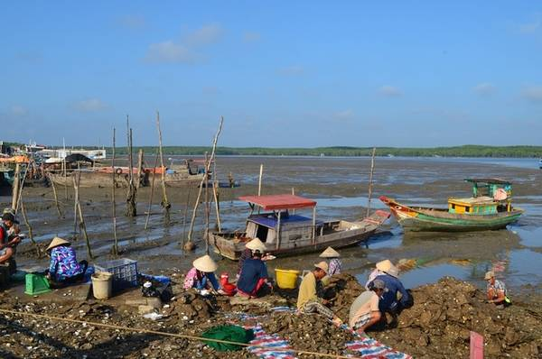 Thạnh An là xã đảo thuộc huyện Cần Giờ, cách trung tâm TP HCM hơn 70 km về phía đông. Người dân trên đảo chủ yếu sinh sống bằng nghề nuôi trồng, đánh bắt hải sản, làm muối...