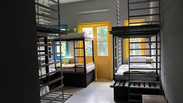 Color Dorm