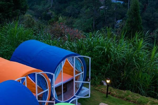 Không gian xanh mướt xung quanh hostel