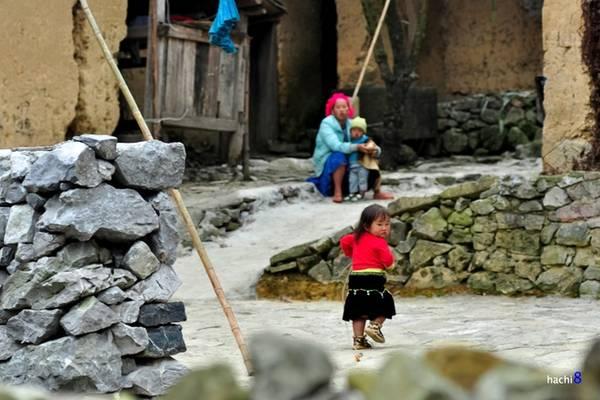 """Description: Qua Yên Minh rồi Phố Cáo, bạn tới thung lũng Lũng Cẩm nằm lọt giữa không gian núi rừng. Nơi đây có ngôi nhà trình tường cổ đặc trưng của người Mông tại cao nguyên đá, cũng là bối cảnh trong phim """"Chuyện của Pao"""". Khu vực đã được quy hoạch với nhiều ruộng hoa tam giác mạch và những ngôi nhà thuộc làng văn hóa du lịch Lũng Cẩm. Vé tham quan là 10.000 đồng một người."""