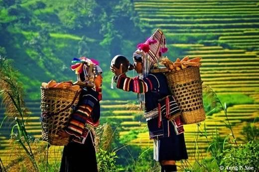 Kyaing Tong là thủ phủ của vùng Tam giác vàng, nơi đây gây ấn tượng bởi vẻ đẹp của những núi đồi trập trùng và các bản làng người dân tộc thiểu số. (Nguồn: Internet)