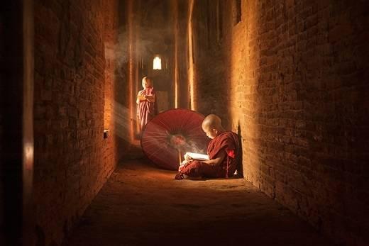 Các chú tiểu chăm chú đọc sách nhờ ánh nắng chiếu qua khung cửa sổ. (Nguồn: Internet)