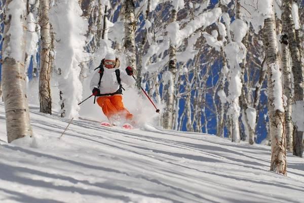 Hokkaido, Nhật Bản: Đây là địa điểm lý tưởng cho những ai yêu thích các môn thể thao mùa đông. Đặc biệt, tuyết ở đây rất khô và nhẹ, tạo ra thiên đường cho trượt tuyết và trượt ván. Sau một ngày vui chơi, du khách có thể ngâm mình trong suối nước nóng, thưởng thức rượu sake và các món ăn truyền thống. Ảnh: Adrex.