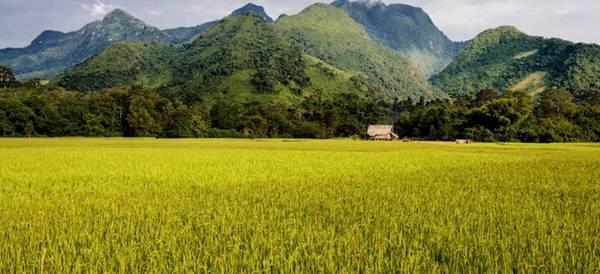 Nong Khiaw, Lào: Nằm ở phía bắc Luang Prabang, trên bờ sông Nam Ou, ngôi làng nhỏ bé này là một trong những nơi tuyệt nhất để nghỉ ngơi, thư giãn ở Lào. Bạn có thể nằm trên võng hóng gió, thưởng thức một chai bia mát lạnh và ngắm hoàng hôn lộng lẫy.