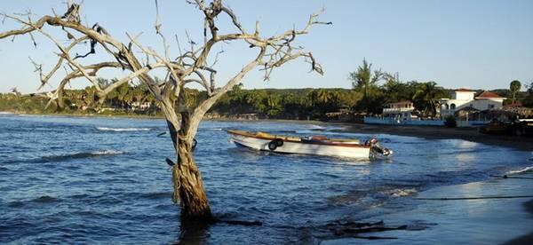 Bãi biển Treasure, Jamaica: Trên hòn đảo nghỉ dưỡng nổi tiếng thế giới, bãi biển Treasure được lòng du khách bởi sự yên tĩnh, thư thái, cạnh cộng đồng dân cư thân thiện.