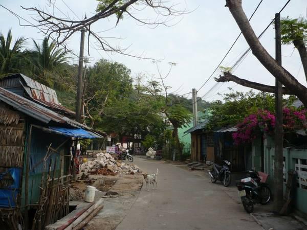 Con đường làng quanh đảo. Ảnh: Lê Hữu Uy