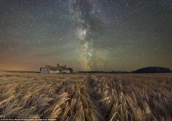 Bầu trời sao lộng lẫy trên một trang trại giữa cánh đồng ở đảo Anglesey xứ Wales, ảnh của Kris Williams (Anh).