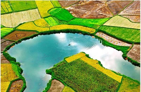 """Đây cũng là kho tài sản phản ánh thiên nhiên tươi đẹp, nhằm đem đến cho người xem về đất nước, con người Việt Nam cần cù, hiếu khách. Trong hình là tác phẩm """"Một góc Bắc Sơn"""" của tác giả Trần Quang Quý."""