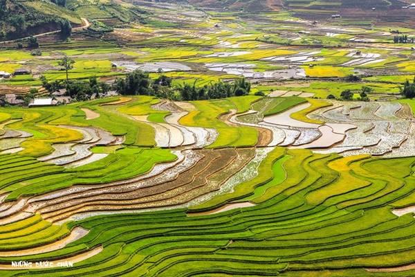 Mùa nước đổ đẹp mê hoặc trên cánh đồng ruộng bậc thang Khau Phạ thường diễn ra vào tháng 5-6 hằng năm.