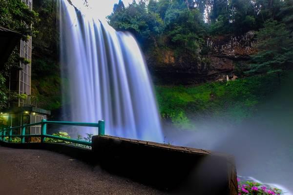 Thác Dambri hùng vĩ giữa đại ngàn, đây được xem là một trong những thác nước đẹp nhất ở Tây Nguyên.