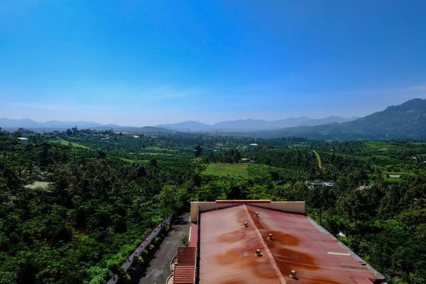 Đây là góc nhìn từ khách sạn mình ở trên đường Trần Phú, phía xa là những dãy núi, gần hơn là thung lũng trà xanh mát.