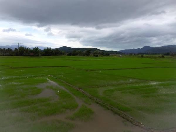 Phú Yên là một tỉnh ven biển thuộc miền Nam Trung Bộ, thuộc trục giao thông chính Bắc - Nam, nối Bình Định và Khánh Hòa. Địa phận Phú Yên được đánh dấu bởi 2 con đèo, phía bắc giáp Bình Định là đèo Cù Mông và phía nam giáp Khánh Hòa là đèo Cả.