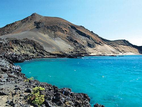 Kham-pha-ve-dep-quan-dao-Galapagos-ivivu-2