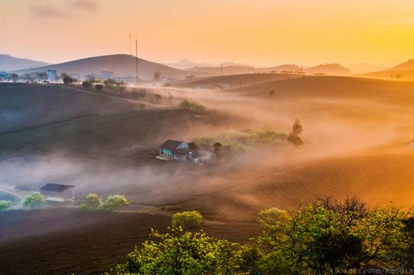 Sương sớm trên cao nguyên Mộc Châu. Ảnh: Mèo Già