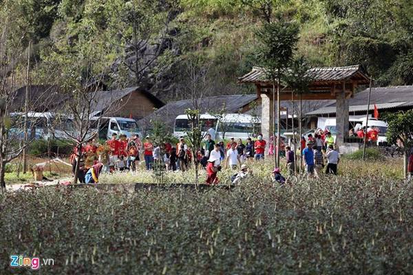 Trước ngày khai mạc lễ hội hoa Tam giác mạch một tuần, các bản làng quanh thị trấn Đồng Văn đông nghẹt du khách từ các tỉnh, thành đổ về. Nhà của Pao là một trong những điểm thu hút nhiều người, đặc biệt từ sau khi nơi đây được chọn làm bối cảnh cho một bộ phim cùng tên.