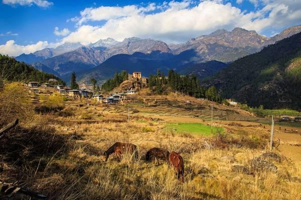 Pháo đài ở làng Drukgyel, một trong những ngôi làng cổ nhất Bhutan - trong ánh hoàng hôn, phía sau là dãy núi biên giới giữa nằm giữa biên giới giữa Tây Tạng (Trung Quốc) và Bhutan. Pháo đài trên đỉnh đồi được xây năm 1649. Ảnh: Hải Piano.
