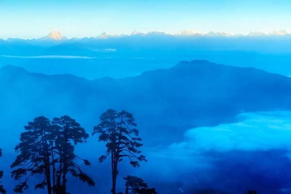 Anh Nguyễn Thanh Tùng cho biết, anh chụp tấm hình này vào buổi sáng khi trên đường từ Thimphu sang cố đô Punakha, thấy toàn dải núi tuyết Himalaya rực sắc mặt trời khi bình minh lên quanh khu rừng thông cổ thụ trên đèo Dochula.