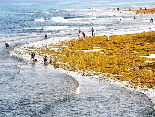 Cuộc sống bình dị của người dân bên bãi đá quanh đảo.